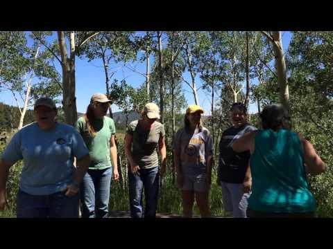 Camp Songs - I Met a Bear