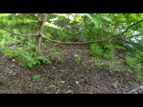 Craiglockhart Nature Reserve