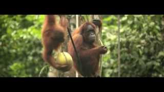 Tourism Malaysia Commercial 2014 Malaysia Truly Asia by Yuna