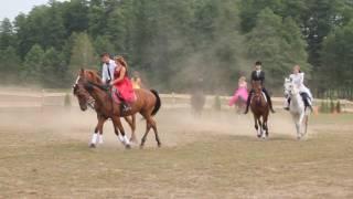 Kadryl koni-Stajnia Roka - Polonez