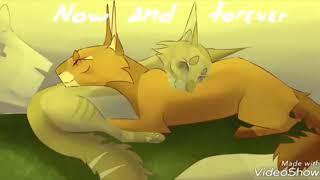 Коты Воители (Гимн Котов Воителей)
