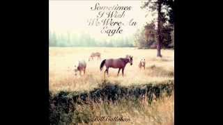 Bill Callahan - My Friend (with lyrics)