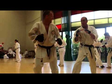 Sensei John Bryan Sparing Daz Frost On His Shodan Assessment