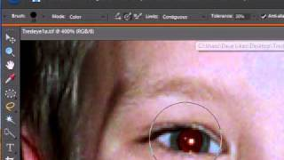 Remove Red Eye using Photoshop Elements 6.0