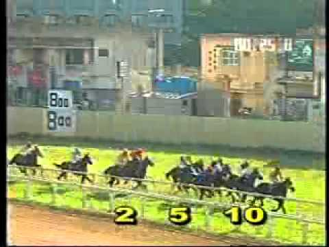 Hurricane State Filly Skyliner Sprints To Victory At Bangalore