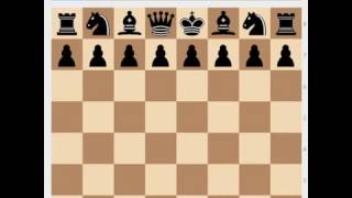 Сильные и слабые ладьи открытые линии 2 и 7 горизонталь Урок 2