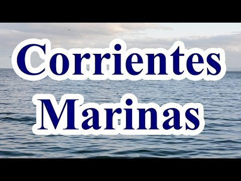 Corrientes Marinas - Documental 6 Minutos