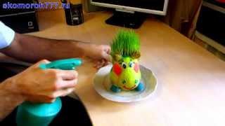 видео Травянчик (Эколюдик) Заяц 1288