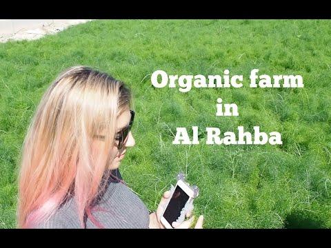 Organic farm in Al Rahba I Abu Dhabi