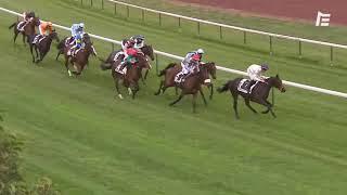 Vidéo de la course PMU PRIX KALYMNOS
