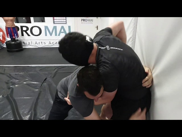 Cage Wrestling Techniques At MMA Fundamentals