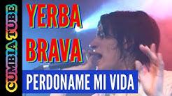Yerba Brava - Perdoname mi Vida