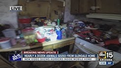 Maricopa County: 13 animals, one dead, found in Glendale mobile home