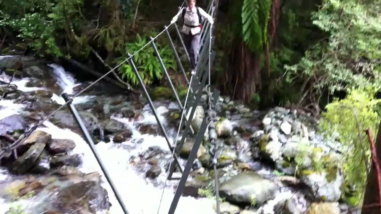 wire bridge crossing on the hollyford track youtube