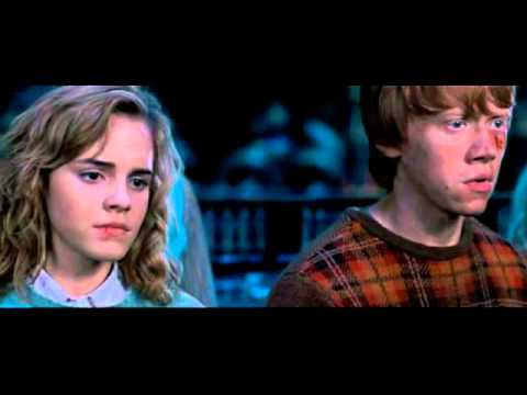 Гарри Поттер и орден Феникса 2007
