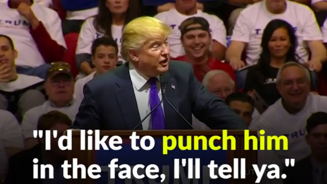 Image result for trump punch in the face