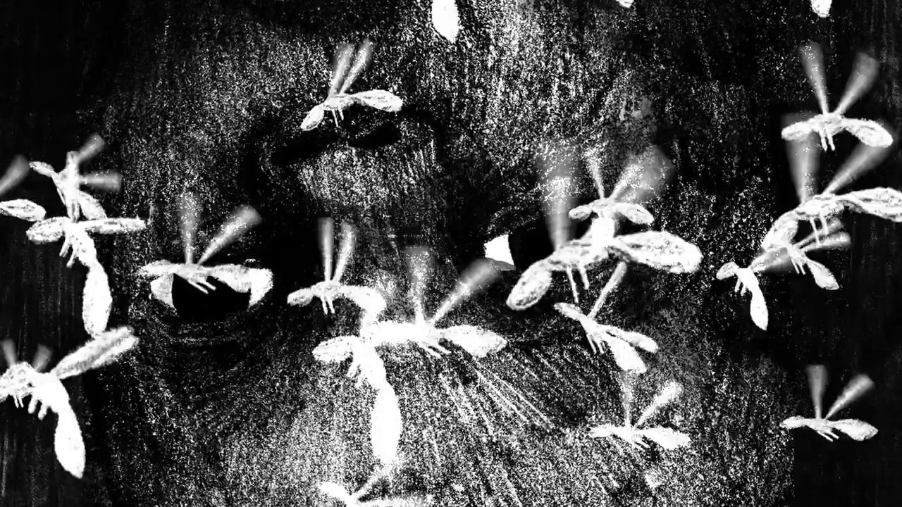 Resultado de imagen para el nido kenneth oppel