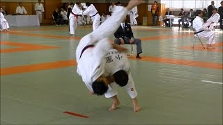 IPPON-SEOI-NAGE(2017 TOKYO Judo Contest for High Dan Holders)