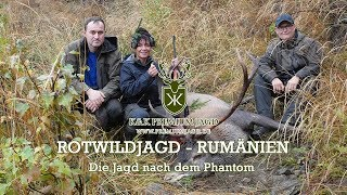 Rotwildbrunft-Rumänien - Champions League der Rotwildjagd