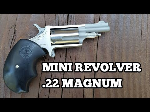 North American Arms .22 Magnum Mini Revolver  - Review And Test Fire