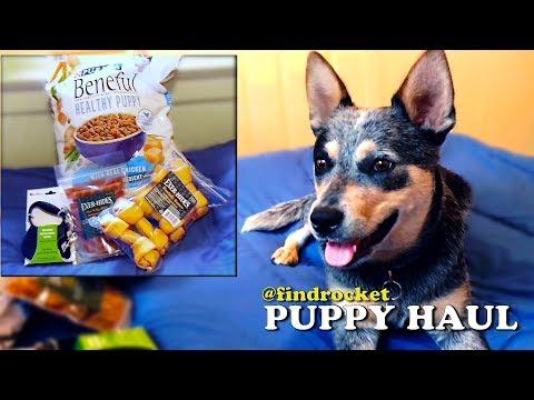 Puppy Haul #2 - Bacon Rawhide & More!