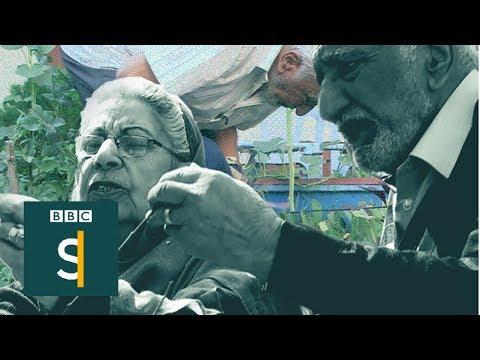 The gardeners of Kabul - BBC Stories