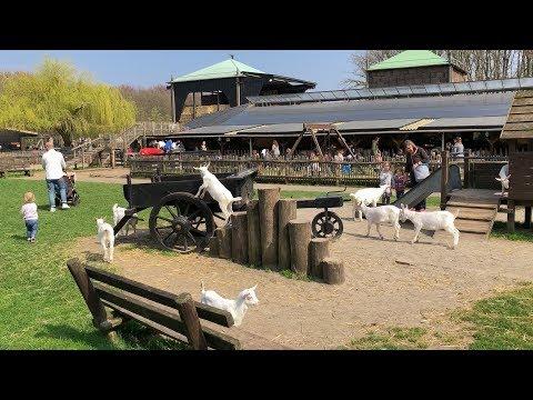 Amsterdam Forest / Goatfarm Ridammerhoeve