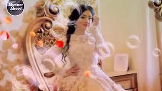 اجمل عروس اميرة كل النجمات لوائل كفوري
