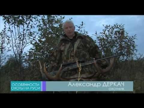 Особенности охоты на Руси: Охота на лося зимой, Уроки онлайн смотреть бесплатно