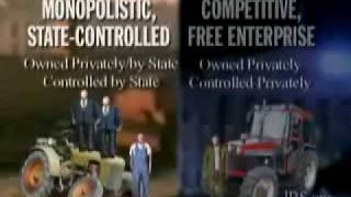 Free market capitalism vs State controlled capitalism