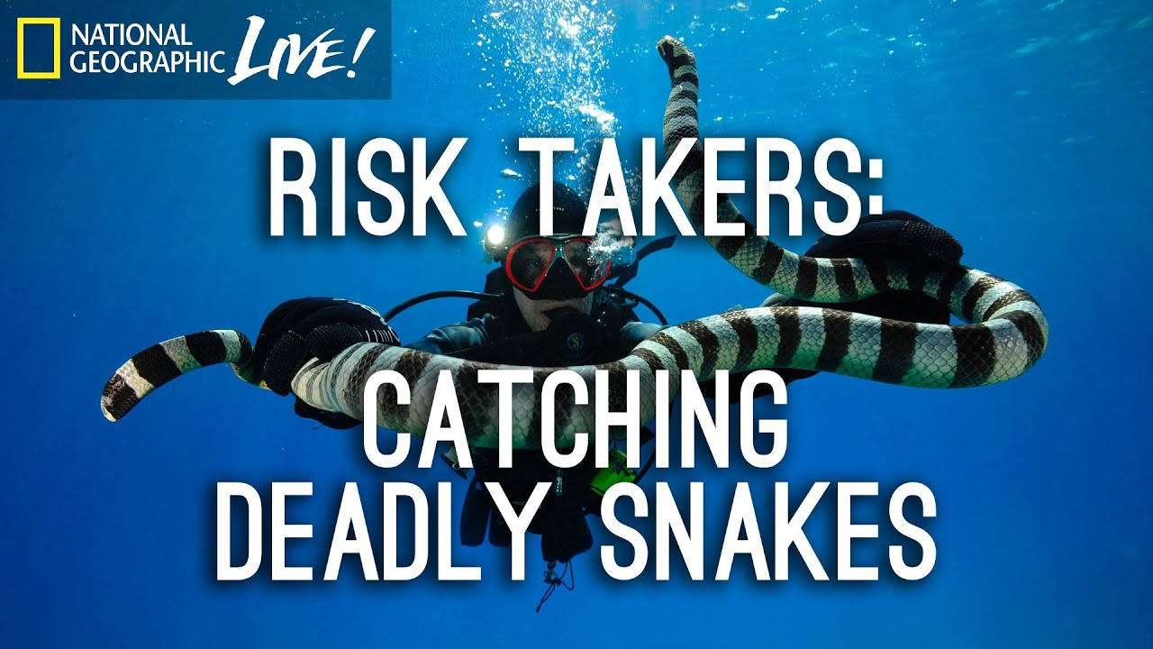 Download Risk Takers: Catching Deadly Snakes | Nat Geo Live