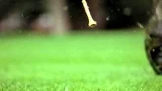 PGA Championship Golf 2000 trailer