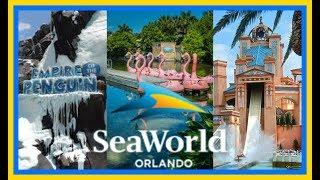 Best Rides At Seaworld Orlando