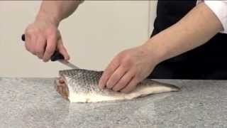 How to fillet a Grey Mullet | 209