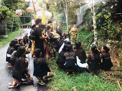 BALI: Crémation  à Desa Apuan, petit village au centre de Bali