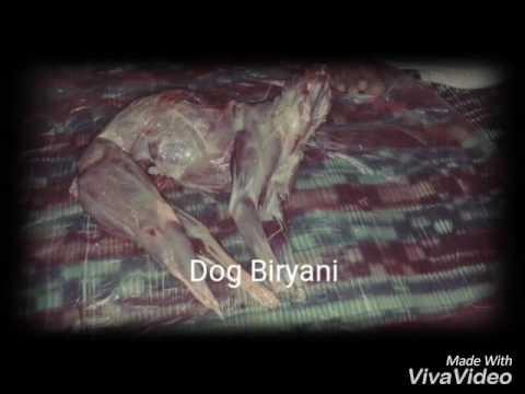 Dog meat Hyderabad Hotel