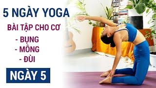 Tự tập yoga tại nhà, thử thách 1 tuần tập cơ bụng, mông đùi | Ngày 5