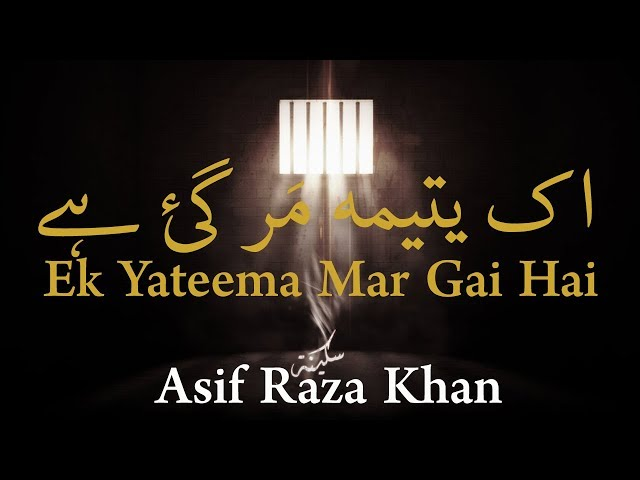 2012-13 Sad Noha | Ek Yateema Mar Gai | Asif Raza Khan Travel Video