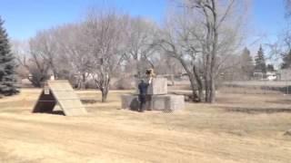 Saskatoon Police Dog Training