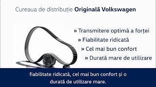 Curele de distribuție Originale Volkswagen.
