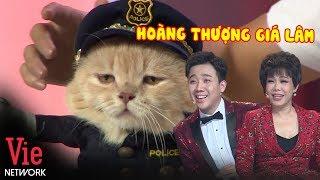 """Mèo """"Hoàng Thượng"""" Cực Thần Thái Đốn Tim Trấn Thành Và Việt Hương l Người Bí Ẩn Mùa 6"""