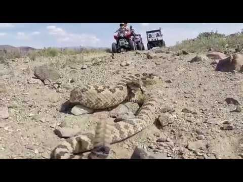 ATV Riding in Walker River, NV on Memorial Day Weekend 2014
