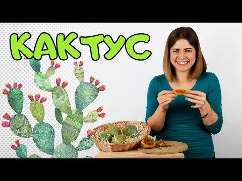 Плод кактуса или опунция. Как это есть? #Opuntia