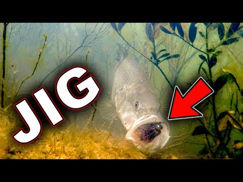 underwater-bass-strikes!!!-jigs-and-swimbaits---crazy-footage!!!