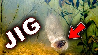 Underwater Bass Strikes!!! Jigs and Swimbaits - Crazy Footage!!!