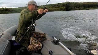 Эта рыбалка  2019 г.,запомниться надолго.Жор щуки.