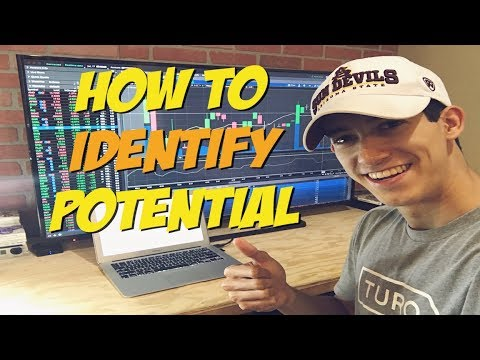 How To Identify Potential Trading Stocks | Penny Stock Investor