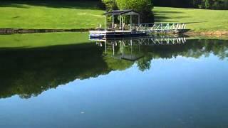Pond repairing ideas