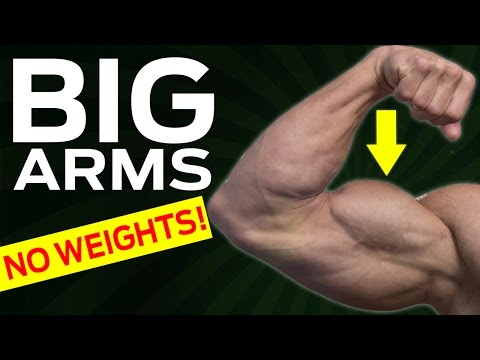 How To Get Bigger Arms Without Weights (BICEPS DESTROYER!)