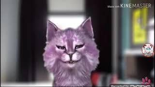 Кошка лана клип GRRRLs